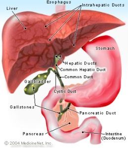 value of a liver flush