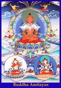 Buddha_Amitayus